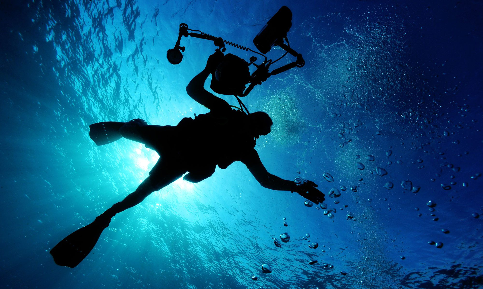 Seahorse Divers - Try Diving For Just £15.00
